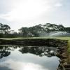gator_creek_irr-golf